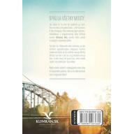 Most do prístavu (e-kniha)