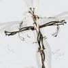 Vymenil nebeskú korunu za tŕňovú...